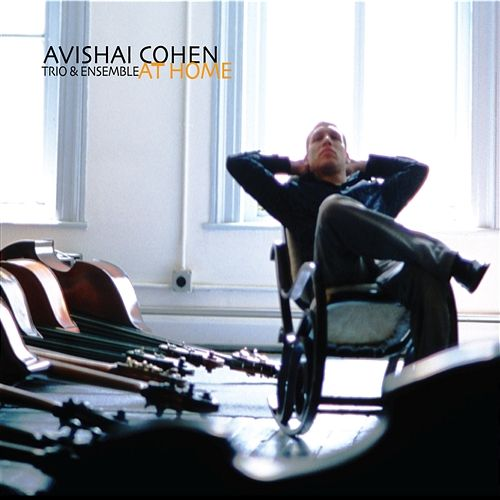 Remembering (Avishai Cohen-reprise)