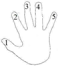 cours de piano main et doigté